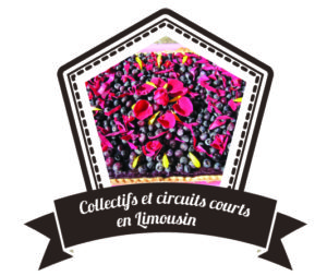 Circuits courts