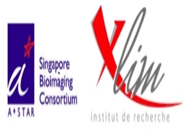XLIM-SBIC