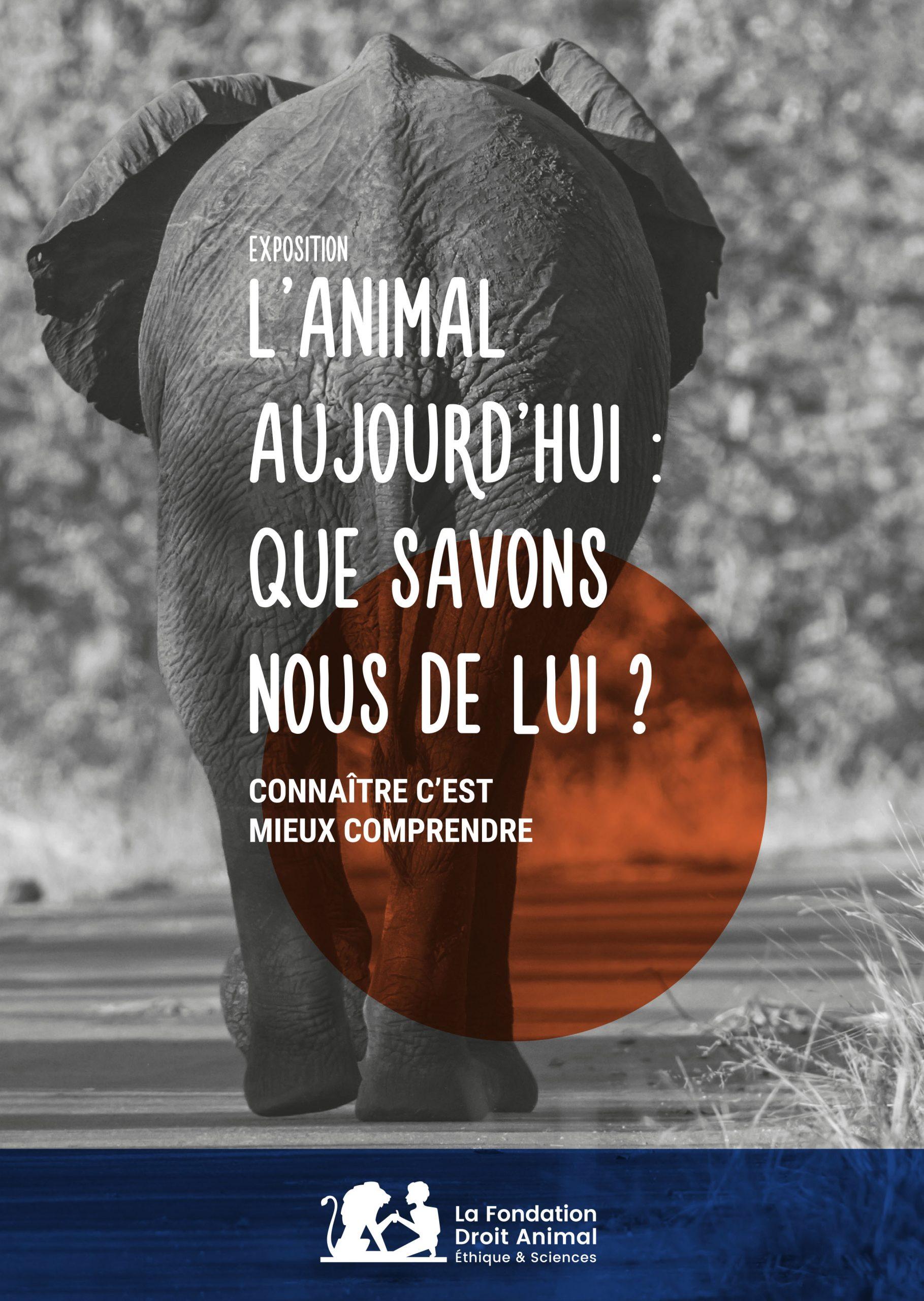 Affiche de L'animal, que savons-nous de lui ?