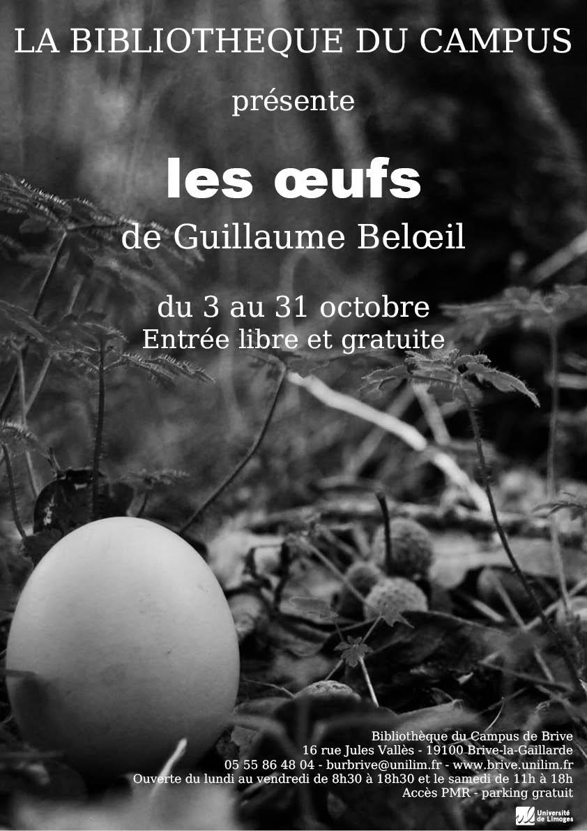 Affiche - Guillaume Beloeil